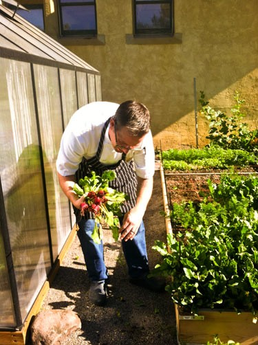 chef harvesting beets in mountain air for guest ranch soup
