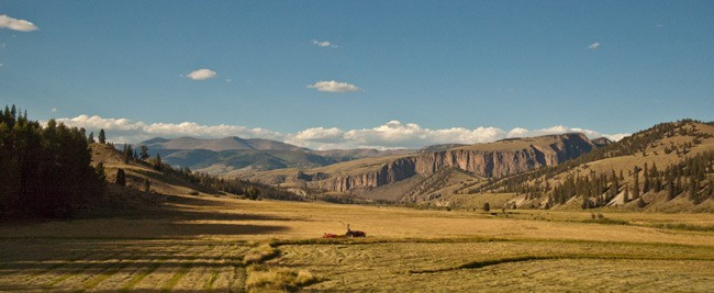 Red tractor sits in hayfield with colorado mountains in background