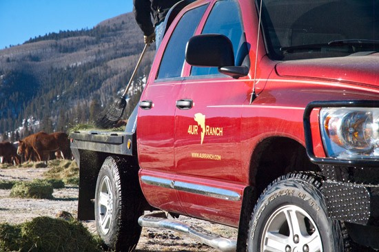 2007 red dodge Ram 1500 crew cab shines with 4UR logo as horses feed in background