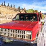 old 1985 GMC feed truck travels down ranch road full of hay