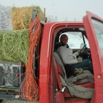 pregnant woman drives loaded red hay truck to horses in snow