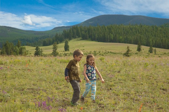 boy and girl walk among blooms of flowers on a Colorado Rocky Mountain Mesa