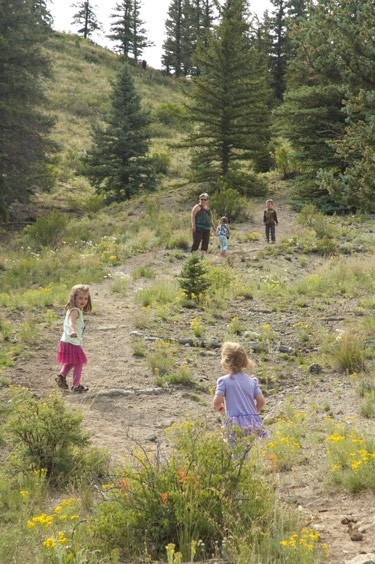 grandmother and three grandchildren climb a Colorado Mountain trail among many bright wildflowers