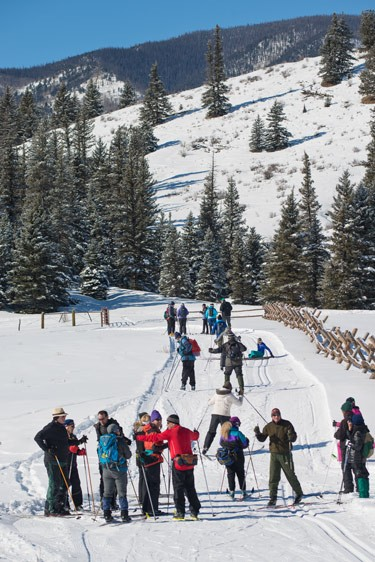 group of skiers wait for instruction at bottom of hill