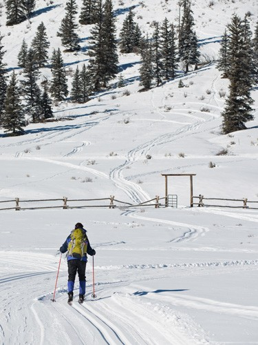 cross-country skier heads up hill of groomed rocky mountain ranch trail