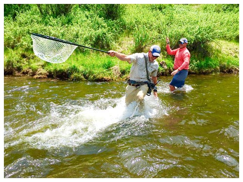 fishing guide and angler net their catch in a riffle of Goose Creek