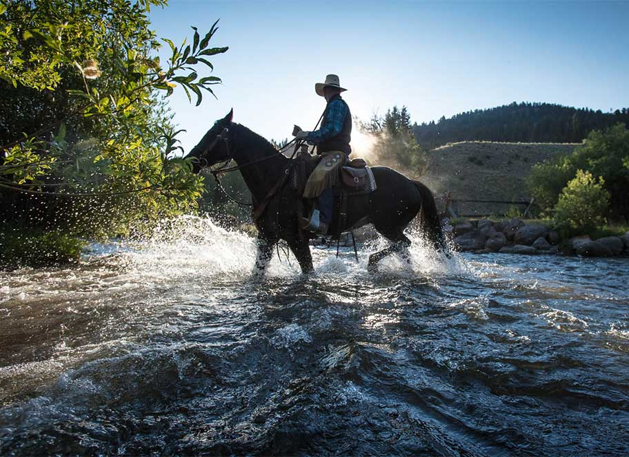 Horse ride through the river