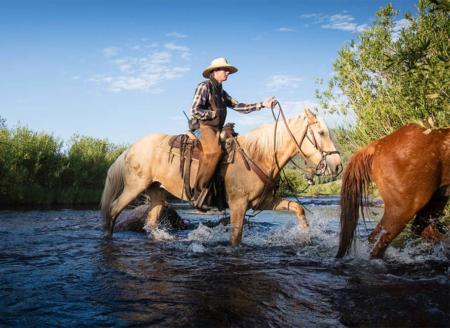 River crossing with horses