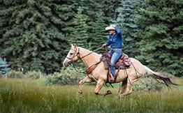 Colorado dude ranch vacation activities include horseback riding at 4UR Ranch