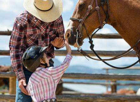 Child petting horse's nose