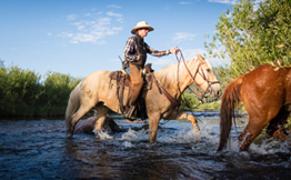 Horseback Riding at 4UR Ranch in Creede, CO